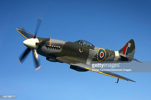 angelholm, sweden - supermarine spitfire mk. xviii fighter warbird. - spitfire stock pictures, royalty-free photos & images