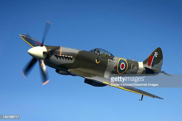 angelholm, sweden - supermarine spitfire mk. xviii fighter warbird. - spitfire - fotografias e filmes do acervo