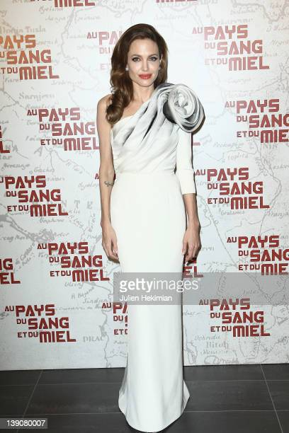 Angelina Jolie attends 'In The Land Of Blood And Honey' Paris premiere on February 16 2012 in Paris France