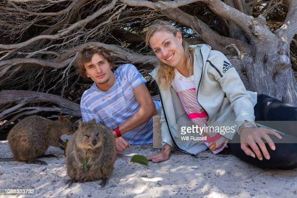 Angelique Kerber and Alexander Zverev of Germany take selfies with quokkas during a trip to Rottnest Island during day three of the 2019 Hopman Cup...