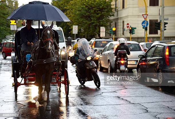 PALASCIANO Angelo Sed president of the Romans horsedrawn carriage drivers and his horse 'Inventore' are pictured in the traffic under heavy rain on...