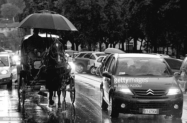 Angelo Sed president of the Romans horsedrawn carriage drivers and his horse 'Inventore' are pictured in the traffic under heavy rain on their way...