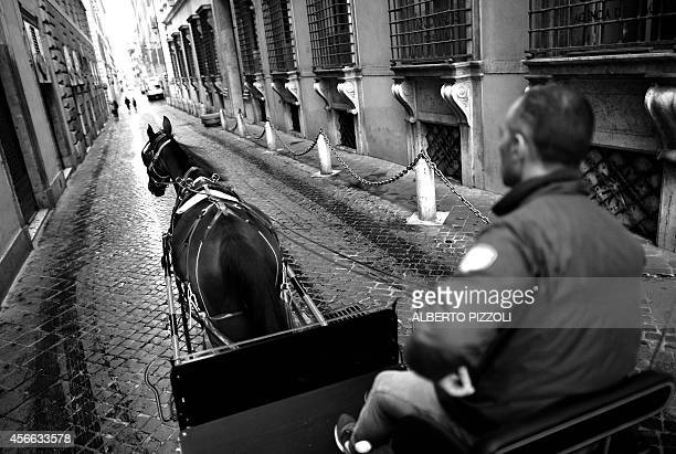 Angelo Sed president of the Romans horsedrawn carriage drivers and his horse Inventore are on their way to work early on October 2 2014 in Rome The...