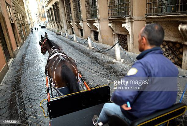 Angelo Sed president of the Romans horsedrawn carriage drivers and his horse 'Inventore' are on their way to work early on October 2 2014 in Rome The...