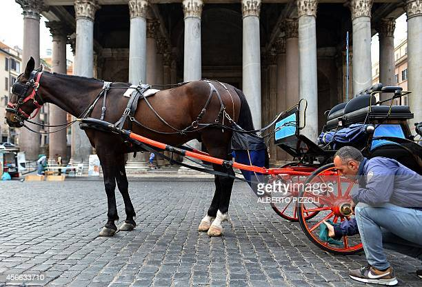 Angelo Sed president of the Romans horsedrawn carriage drivers cleans his carriage as he waits for clients in front of the Pantheon on October 2 2014...
