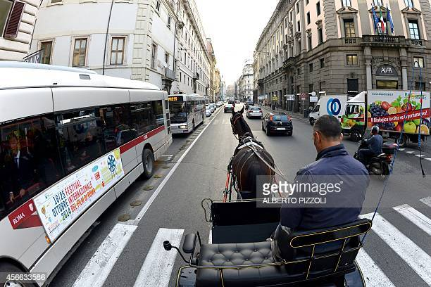 Angelo Sed president of the Romans horsedrawn carriage drivers drives his horse 'Inventore' in the traffic on October 2 2014 in Rome The Botticelle...