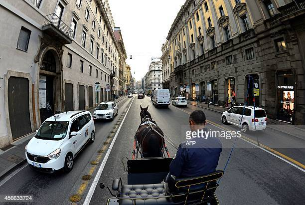Angelo Sed president of the Romans horsedrawn carriage drivers drives his horse Inventore in the traffic on October 2 2014 in Rome The Botticelle are...