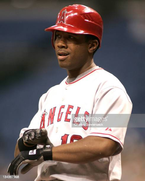 Angels infielder Orlando Cabrera tightens his batting gloves before getting up to bat against the Devil Rays on June 7th 2006 at Tropicana Field in...