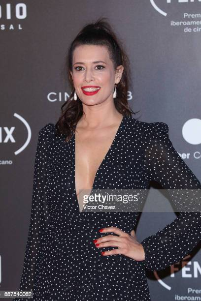 Angie Cepeda attends the Premio Iberoamericano De Cine Fenix 2017 at Teatro de La Ciudad on December 6 2017 in Mexico City Mexico