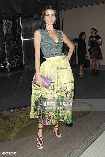 Angie Harmon attends Prada Presents Trembled Blossoms LA at Prada on March 19 2008 in Beverly Hills CA