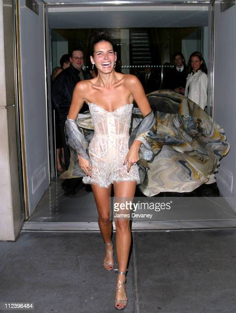 Angie Harmon during 2002 VH1 Vogue Fashion Awards - After-Party at Hudson Cafeteria at Hudson Hotel in New York, New York, United States.