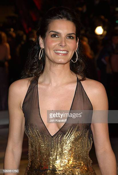 Angie Harmon during 2004 Vanity Fair Oscar Party at Mortons in Beverly Hills California United States