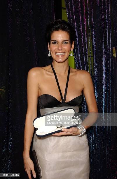 Angie Harmon during 2005 InStyle/Warner Bros Golden Globes Party Inside at The Palm Court at the Beverly Hilton in Beverly Hills California United...