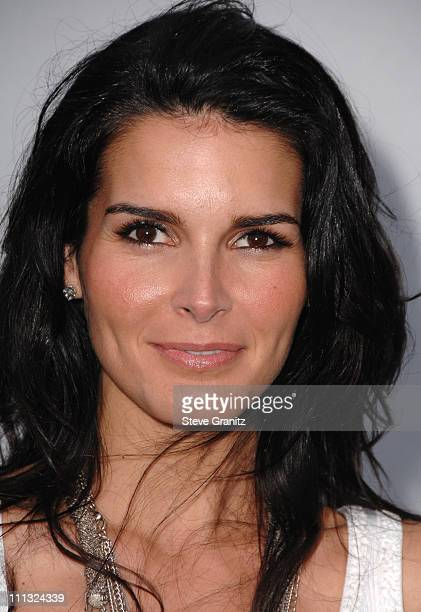 Angie Harmon during 2007/2008 Chanel Cruise Show Presented by Karl Lagerfeld at Hangar 8 Santa Monica Airport in Santa Monica California United States