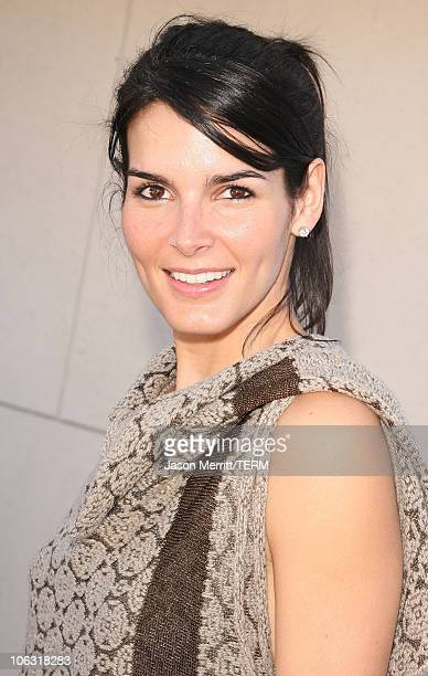 Angie Harmon during 5th Annual John Varvatos Stuart House Benefit Presented by Converse at John Varvatos Boutique in Hollywood California United...
