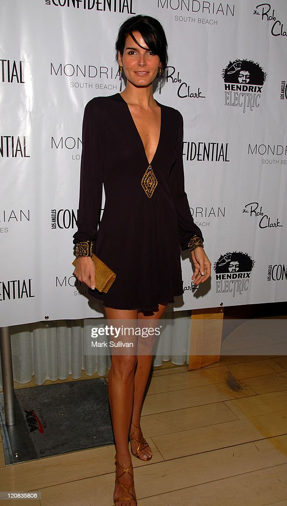 Angie Harmon during Los Angeles Confidential Magazine in Association with Morgans Hotel Group Celebrates the 2007 Oscars with Forest Whitaker, Rob Clark and Hendrix Electric Vodka - Arrivals at Skybar at Mondrian Hotel in Los Angeles, California, United States.