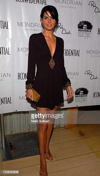 Angie Harmon during Los Angeles Confidential Magazine in Association with Morgans Hotel Group Celebrates the 2007 Oscars with Forest Whitaker Rob...