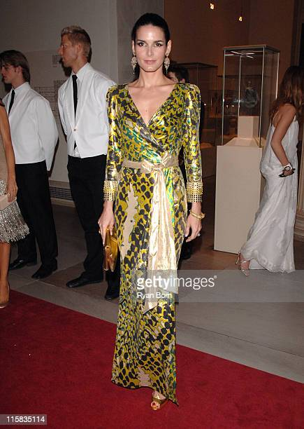 Angie Harmon during Poiret King of Fashion Costume Institute Gala at The Metropolitan Museum of Art Inside Arrivals at Metropolitan Museum of Art in...