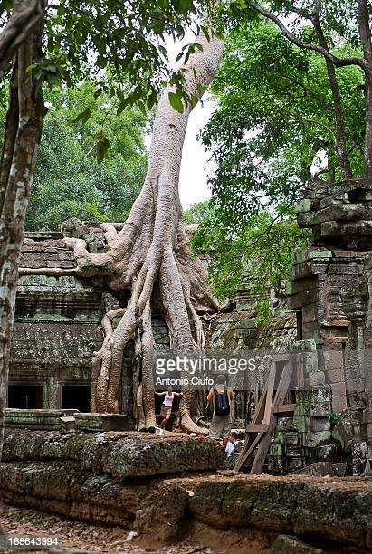 """Angkor in Sanskrit means """"the City"""", and there is no doubt that it was built by expert engineers who cleverly drew a hydraulic system efficiently by..."""