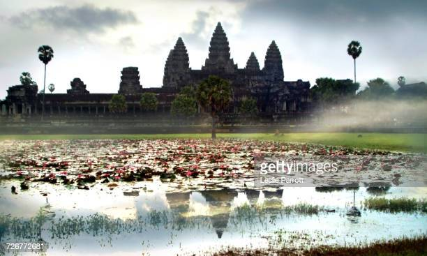 angkor wat at sunrise, siem reap, cambodia - angkor stock photos and pictures