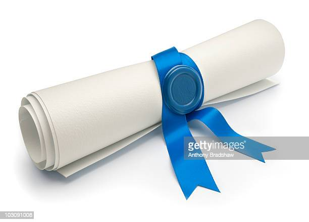 Angled view of scroll with blue ribbon and seal