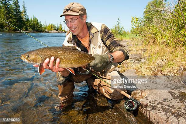 angler holding a large brook trout (salvelinus fontinalis); ontario, canada - speckled trout stock photos and pictures