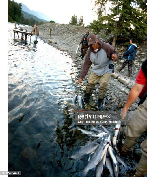Anglers with limits and near limits of sockeye salmon prepare their catches for the ferry ride at the confluence of the Russian and Kenai rivers in...