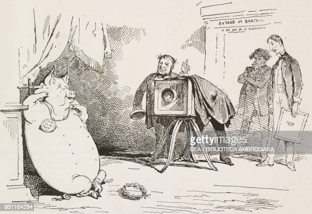 the Venus de Milo of pig breeds a pig being posed in front of a camera illustration by Bertall from the Journal pour rire Journal Amusant No 335 May...