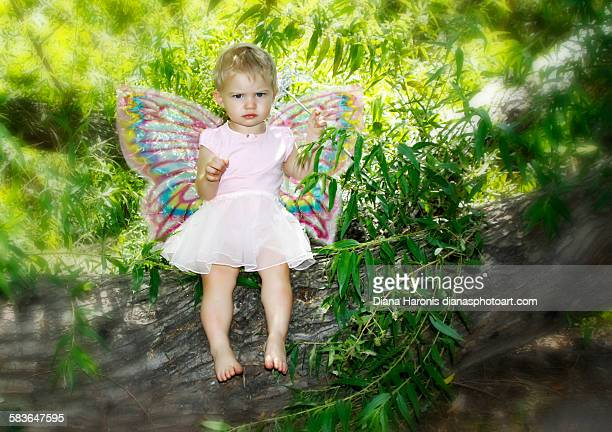 Angry Baby Fairy in Tree