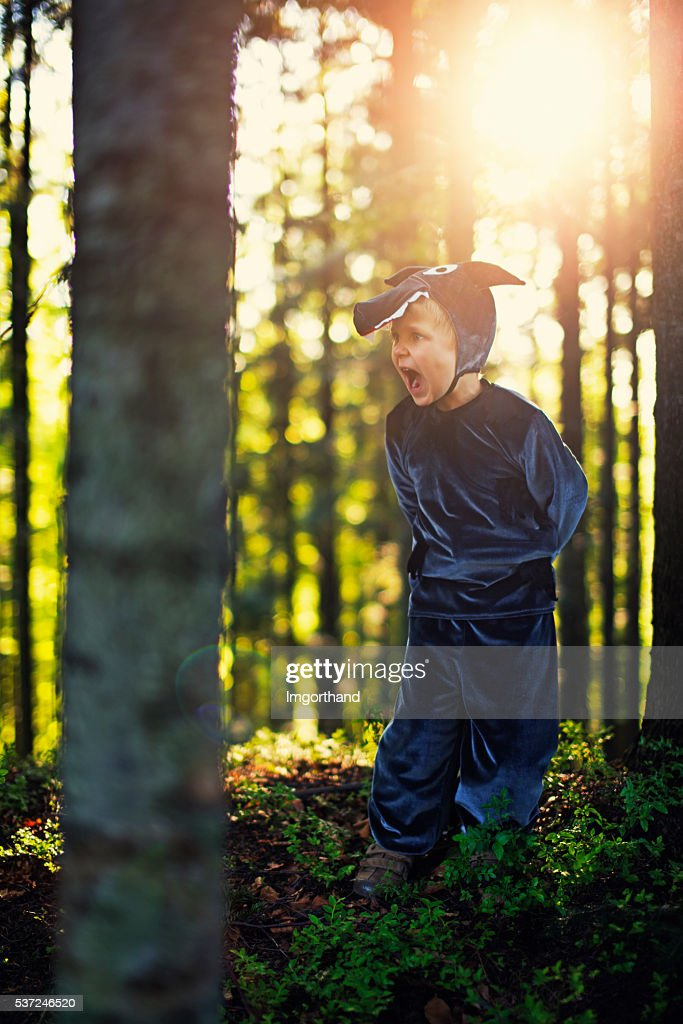 Angry Big Bad Wolf  looking for Little Red Riding Hood : Stock Photo