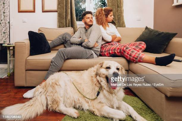 angry couple with dog on sofa at home - couple fighting stockfoto's en -beelden