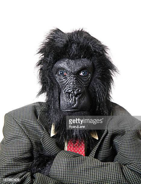 angry gorilla businessman - monkey suit stock pictures, royalty-free photos & images