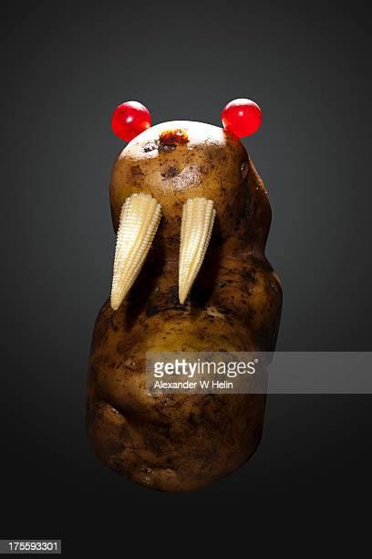 Angry Walrus