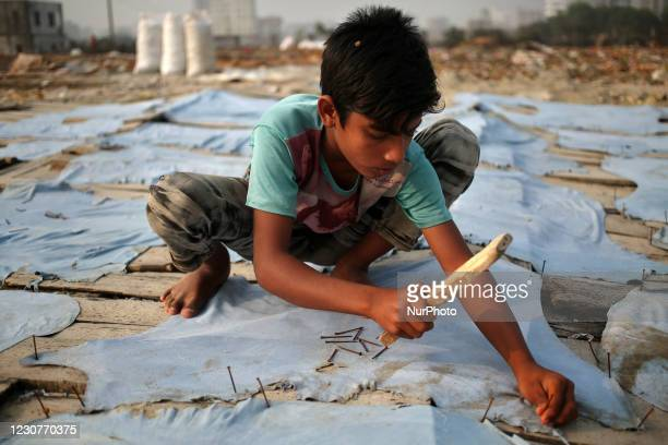 Angur, works at a Tanney to earn one dollar a day in a low-income area in Keraniganj, Dhaka, Bangladesh on Sunday, January 24, 2021. According to the...