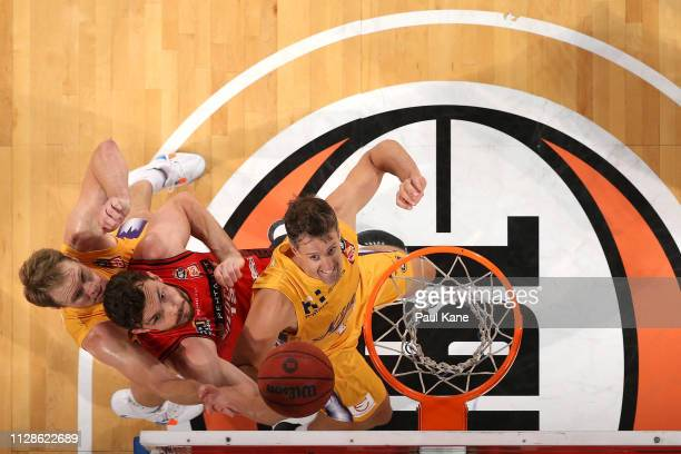 Angus Brandt of the Wildcats contests for a rebound against Brad Newley and Daniel Kickert of the Kings during the round 17 NBL match between the...