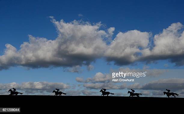 Angus Cheleda riding On Demand lead all the way to win The Banz On Amazon Mares' Handicap Hurdle Race at Wincanton Racecourse on November 5 2016 in...