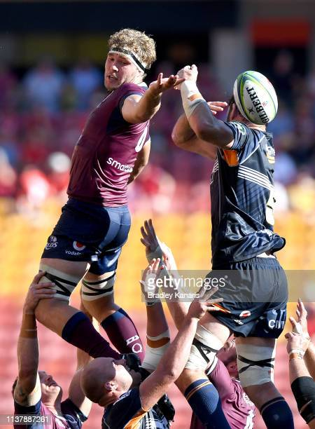 Angus ScottYoung of the Reds and Sam Carter of the Brumbies compete at the lineout during the round six Super Rugby match between the Reds and the...