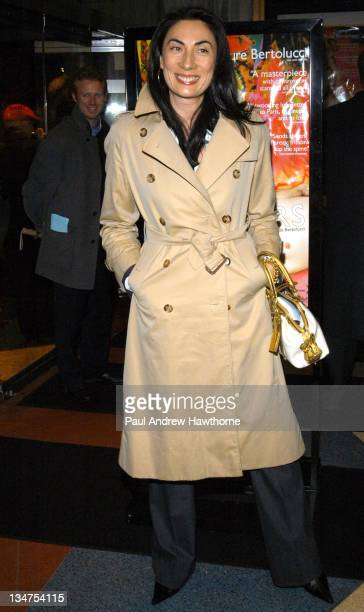 Anh Duong during 'The Dreamers' Premiere New York Inside Arrivals at Beekman Theater in New York City New York United States