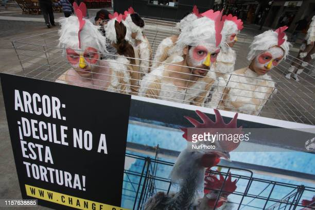 Animal activists protest in Buenos Aires Argentina on 24 July 2019 against the use of cages for chickens in the egg production industry in Argentina...