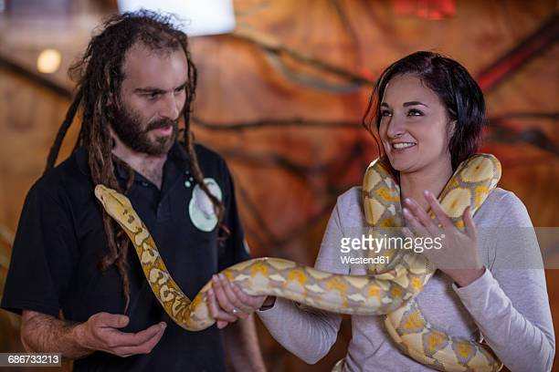 animal attendant handing over albino python snake to woman - cervix stock pictures, royalty-free photos & images
