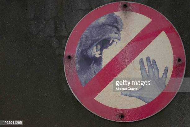 animal bite warning sign on wall - animal teeth stock pictures, royalty-free photos & images