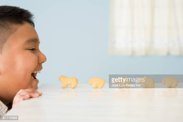 Animal crackers lined up in front of Hispanic boy's mouth