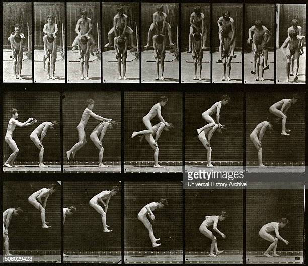 Animal locomotion electrophotographic investigation of consecutive phases of animal movements Created by Eadweard Muybridge English photographer...