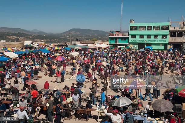 animal market at san francisco el alto, guatemala, central america - el alto fotografías e imágenes de stock