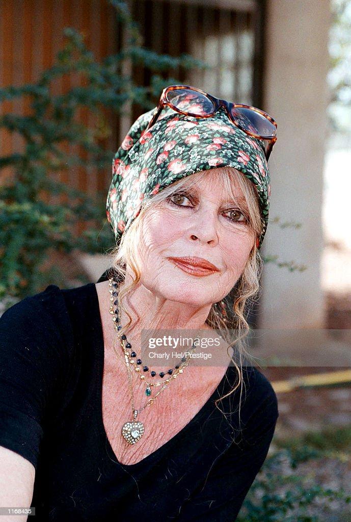 Brigitte Bardot Visits Dog Refuge : ニュース写真