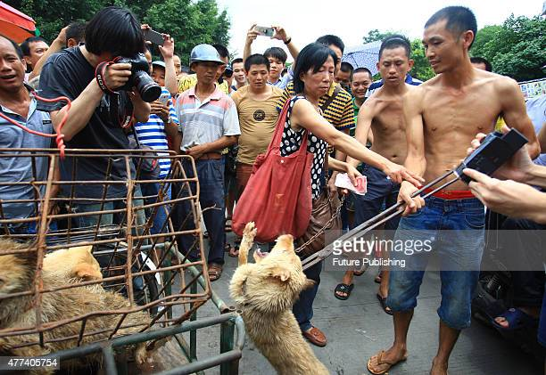 Animal rights activists buy dogs from a vendor on June 20, 2014 in Yulin, China. An annual Chinese dog meat festival kicked off earlier than usual...