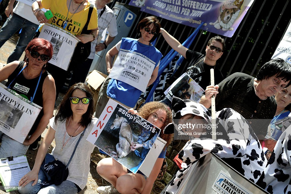 Animal rights activists demonstrated, near the Embassy of China, to protest against the Festival of Yulin to be held on June 21. Yulin is a Chinese metropolis of 5 million and a half inhabitants, where on June 21 of each year, for the summer solstice, is celebrated a festival for which are then slaughtered and eaten about 10 thousand dogs. Representation Animal rights activists, who have staged what happens during the festival: dogs and cats tortured and boiled alive, after being captured in the street or taken from their masters,on June 21, 2016 in Rome, Italy.