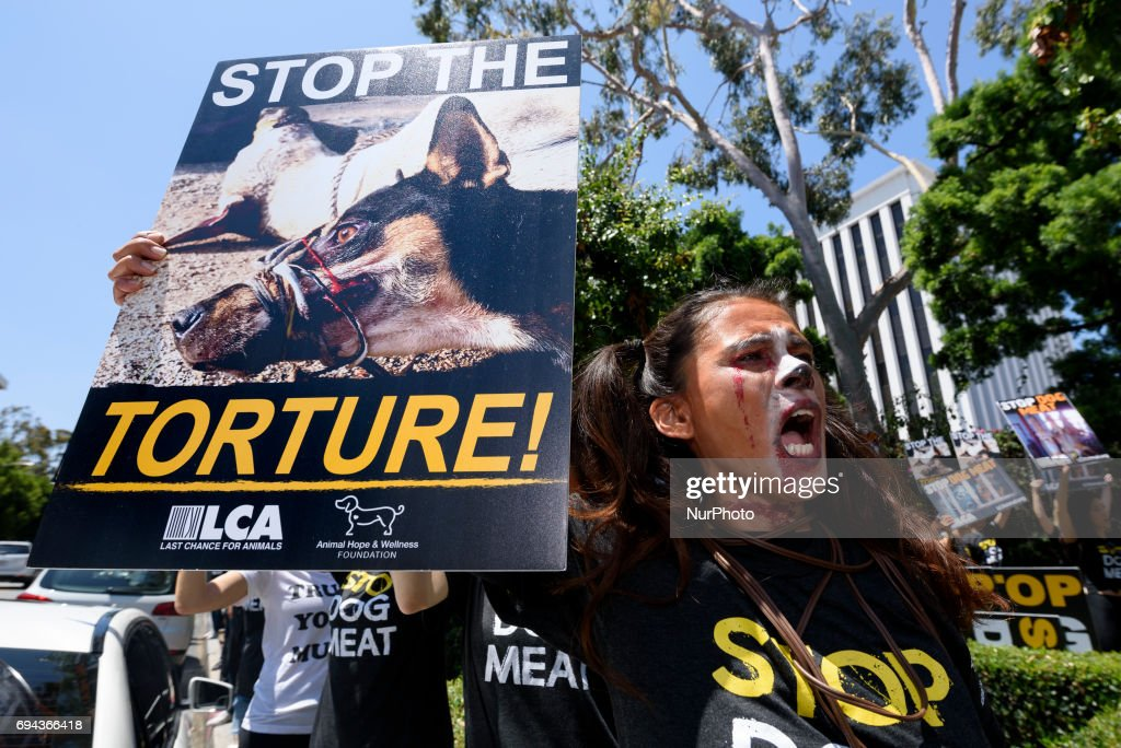 Animal rights activists gather in front of the Chinese Consulate General in Los Angeles to protest China's dog meat trade and Yulin Dog Meat Festival. Los Angeles, California on June 9, 2017. According to activists with Last Chance for Animals, thousands of dogs are beaten, boiled and burned alive during the Yulin Dog Meat Festival.