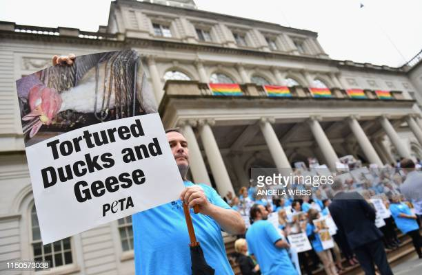 Animal rights activists hold a rally in support of a bill to ban the sale of foie gras on June 18 2019 at New York City Hall in New York The New York...
