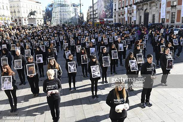 Animal rights activists hold posters of injured animals and dead animals on International Day of the Animal Rights during a demonstration on Puerta...
